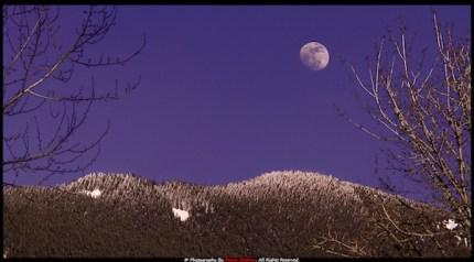 Moonrise from Meadowbrook April 2013 by Manju Shekhar