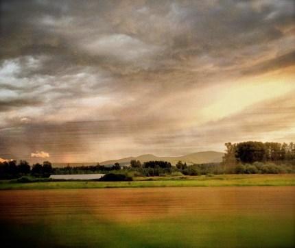 Tolt Hill Road Farm. Taken by Henry Maxon