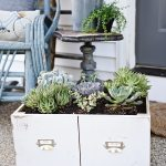 DIY Succulent Drawer