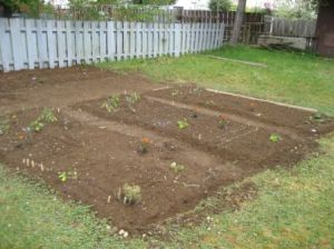 the-garden-09may03