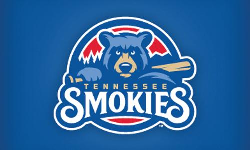 Logo io \u2013 Out of this world logo design inspiration \u2013 Bear Baseball Logo