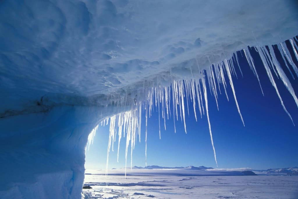 3d Penguin Wallpaper 10 Incredible Facts About Antarctica That Are So Cool They