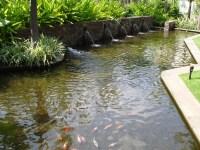 Modern fish ponds | http://lomets.com