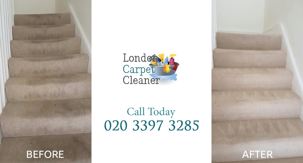 Everything You Need To Know About Finding A Carpet Cleaner