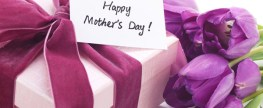 To All the Mother's Out There …