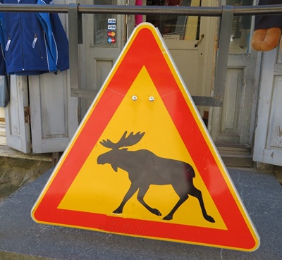 caution moose sign
