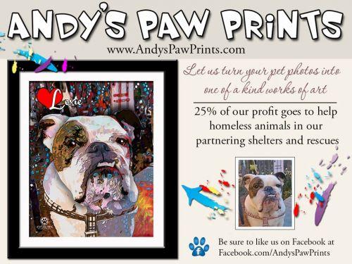 Andys_Paw_prints.jpg