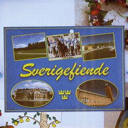 Promoe_Sverigefiende1