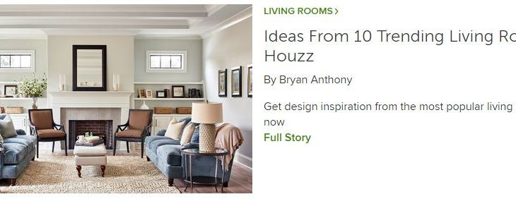 Houzz Living Room Trends