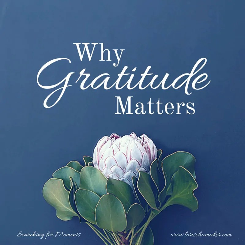 Why Gratitude Matters {Moments of Hope Link-Up}