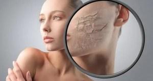 6 mejores cremas hidratantes para pieles secas