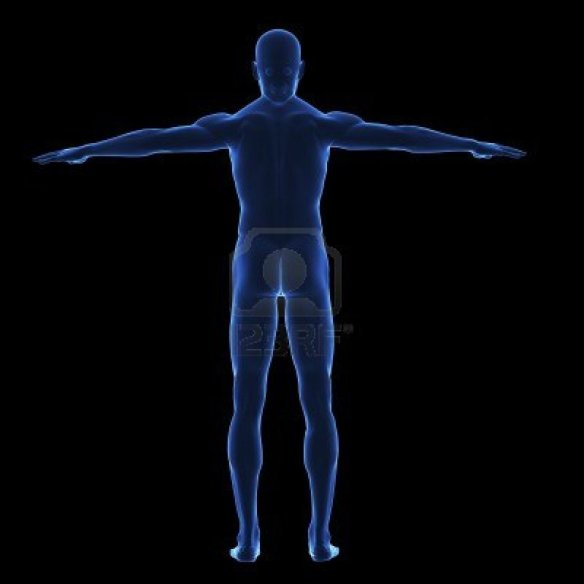 5993906-x-ray-human-body-from-behind-on-lack-background-isolated
