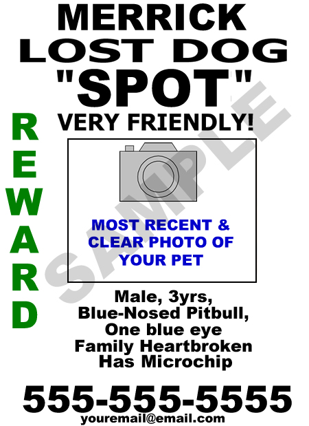 How to make an effective lost/found pet flyer- LAFPOLI (Lost And - Lost Dog Flyer Examples