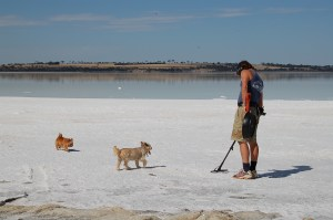 Billy - Toto - Ginger - Metal Detecting at Lake Dumbleyung Western Australia