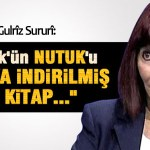 PÊXEMBERÊ Gulrîz Sururî