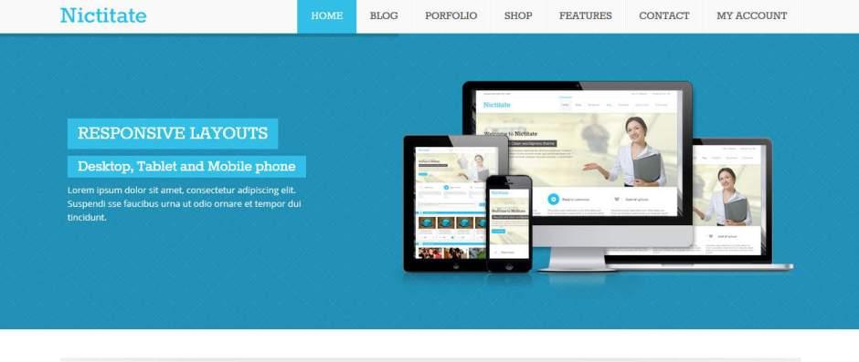 Nictitate Free Business WordPress Theme