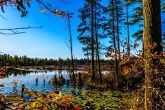 goshen-pond-3931