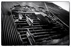 film-noir-ringeos