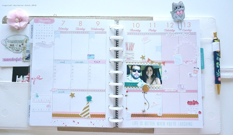 Plan With Me Week 45