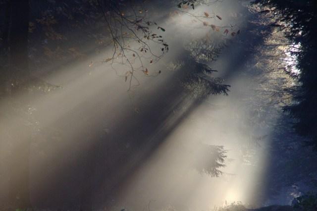 sunbeam-76825_960_720