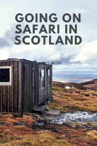 Going on Safari on Scotland