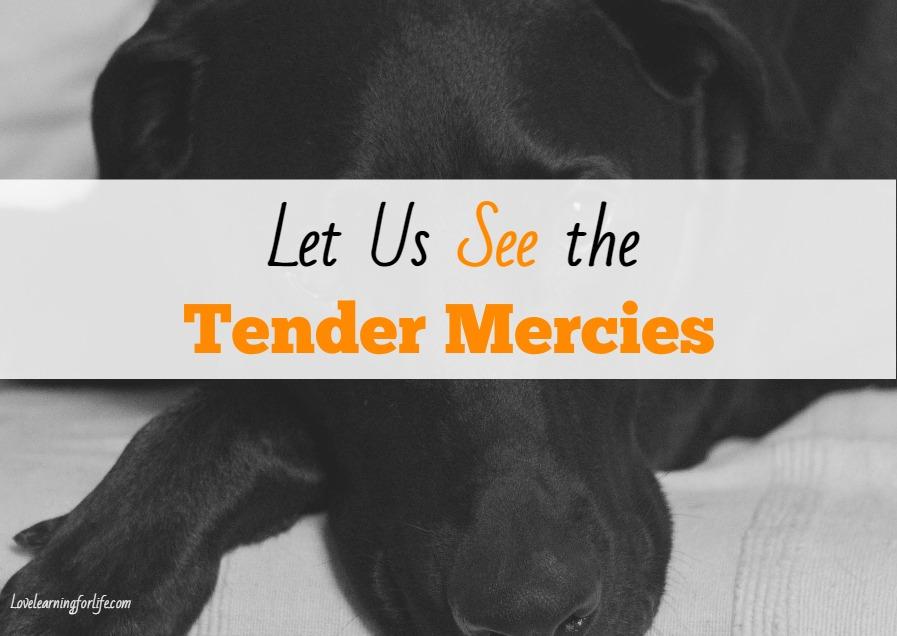 Let Us See the Tender Mercies