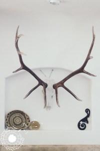 Decorating Around Antlers