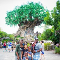 Caring for Baby at Disney
