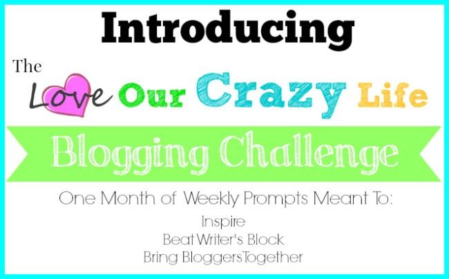 Blog Challenge Recap