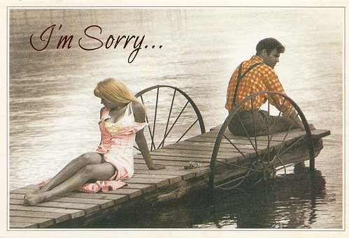 I Am Sorry My Love Letters To My Love