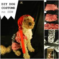 DIY Santa Claus Dog Outfit
