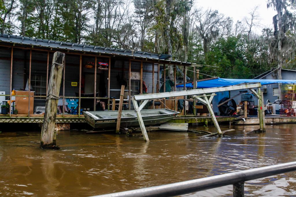 honey island swamp louisiana camps-4