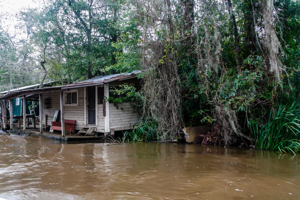 honey island swamp louisiana camps-5