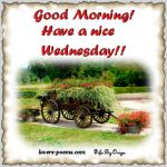 Wednesday Good Morning Messages