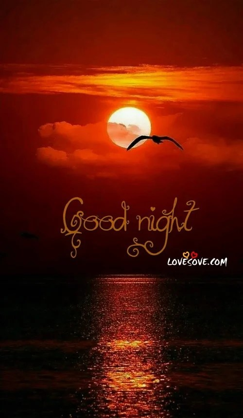 Cute Wallpapers To Say I Love You Good Night Images Good Night Wallpapers Good Night Pics