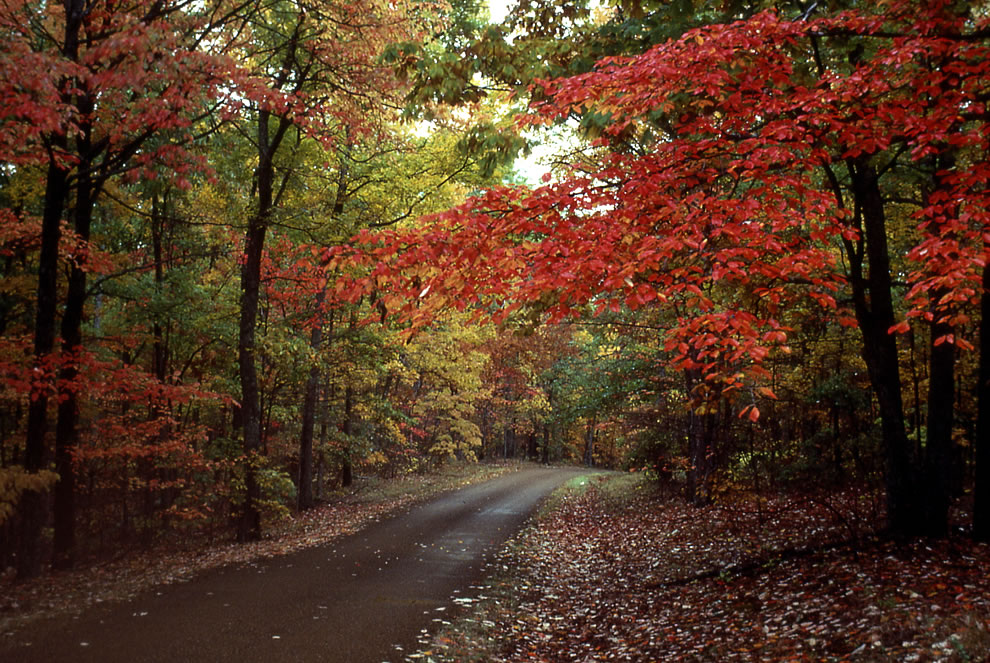 Upstate New York Fall Hd Wallpaper America The Beautiful In Autumn Peak Fall Foliage Dates