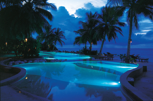 Palm Trees Quote Wallpaper Blue Pool At Night Pictures Photos And Images For