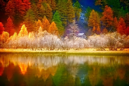 Fall Leaves Clip Art Wallpaper The Colors Of Fall Reflected In The Lake Pictures Photos