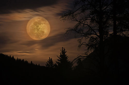 Good Quotes In The Story The Yellow Wallpaper Eerie Full Moon Pictures Photos And Images For Facebook