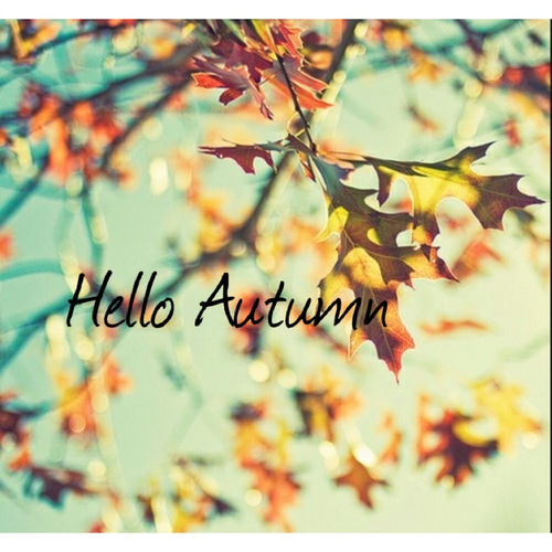 Wallpaper Hello Fall Hello Autumn Pictures Photos And Images For Facebook