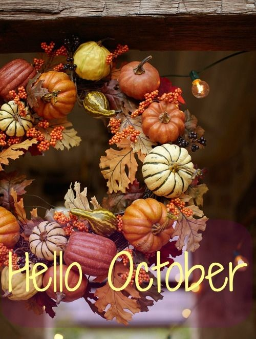 Fall Flowers And Pumpkins Wallpaper Hello October Pictures Photos And Images For Facebook