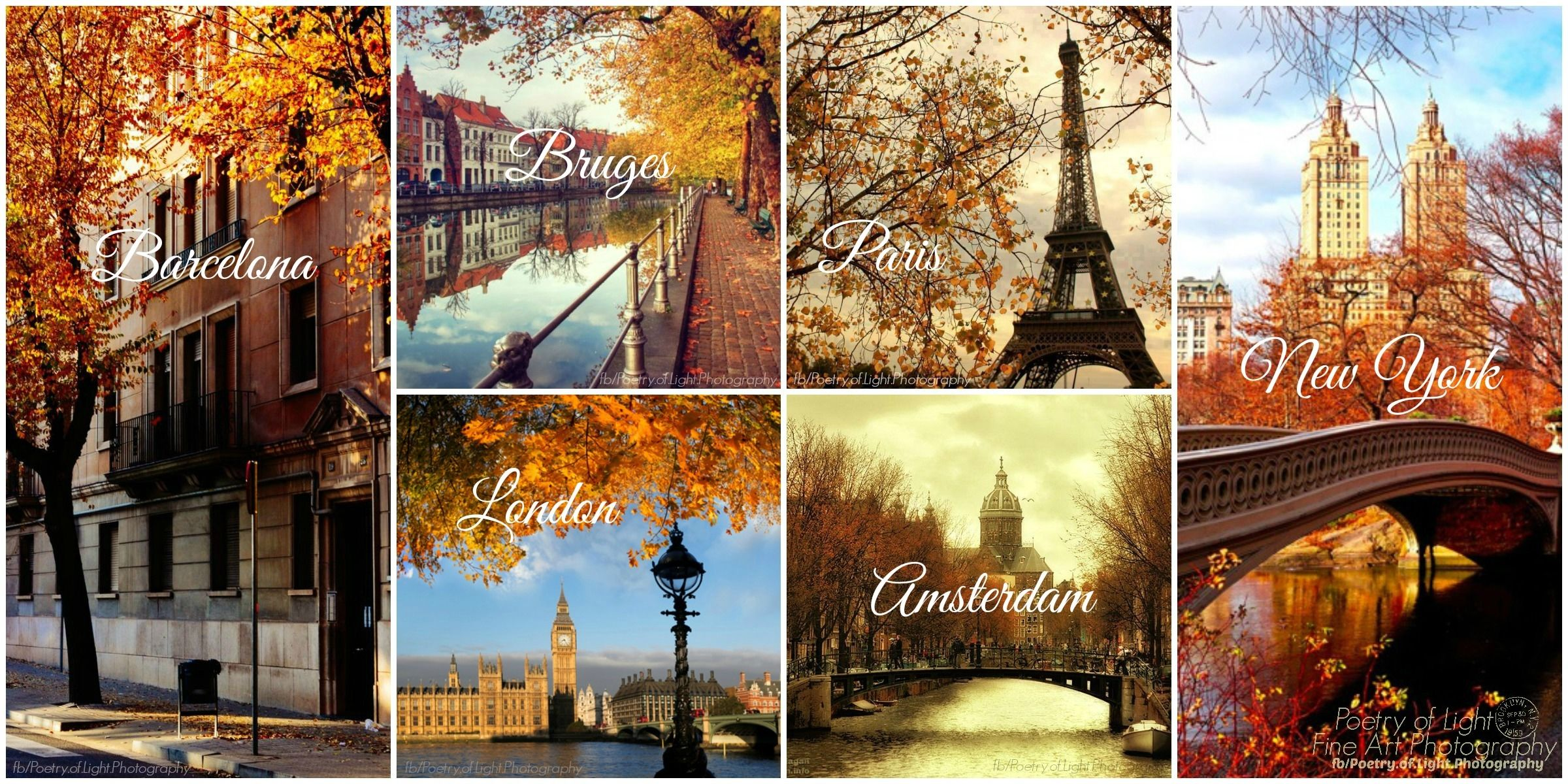 Fall Collage Wallpaper Autumn In The City Pictures Photos And Images For