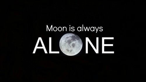 Funny Quote Wallpapers For Phone Moon Is Always Alone Pictures Photos And Images For