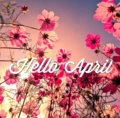 Cute Iphone Wallpaper Ideas Hello April Pictures Photos And Images For Facebook