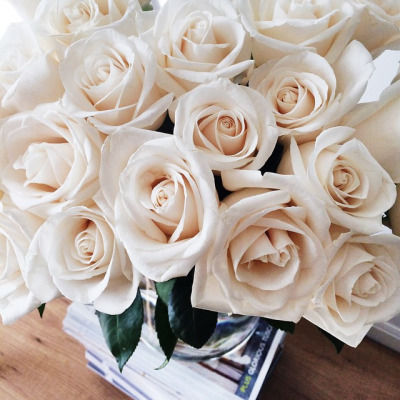 Wallpaper Cupcake Cute White Roses Pictures Photos And Images For Facebook