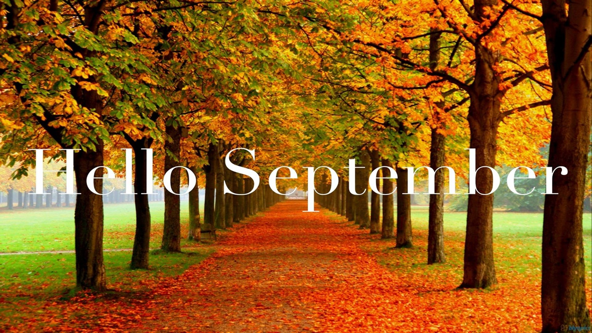 Hd Wallpaper Of Good Morning With Quotes Hello September Pictures Photos And Images For Facebook