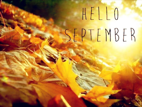 Fall Sunflowers Wallpaper Hello September Pictures Photos And Images For Facebook
