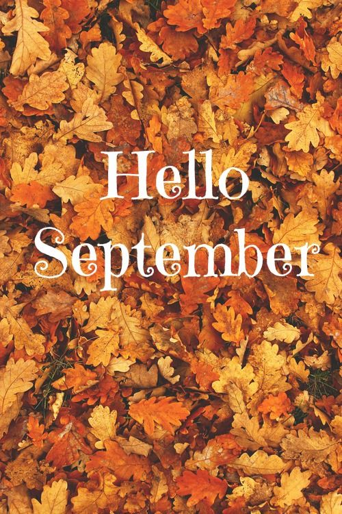 Cute Quote Desktop Wallpaper Hello September With Autumn Leaves Pictures Photos And