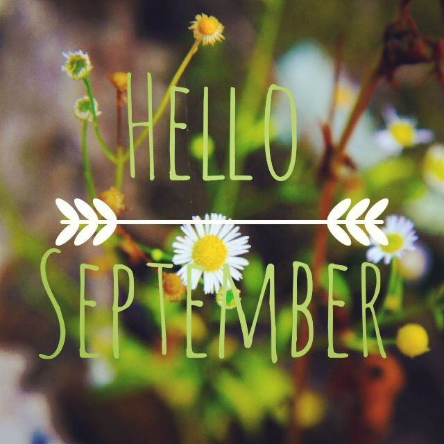 Seasonal Fall Coffee Desktop Wallpaper Hello September Pictures Photos And Images For Facebook
