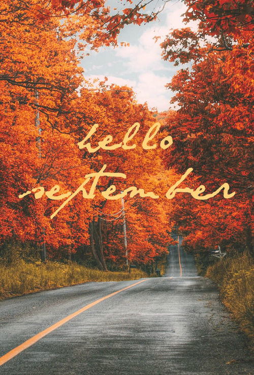 Orange Fall Wallpaper Beautiful Hello September Quote Pictures Photos And